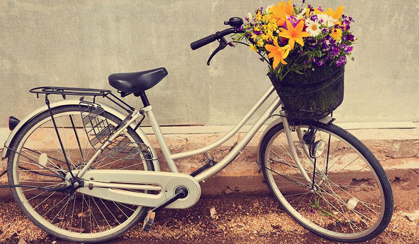 Rätt storlek viktig även för billiga cyklar